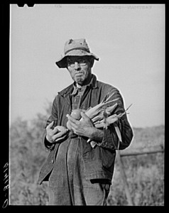 Hill farmer with armful of vegetables from his garden patch. Ross County, Ohio.2