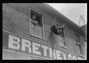Tannery workers, Springfield, Ohio.2